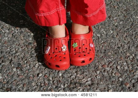 Feet / Shoe