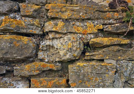 Old stone wall encrusted with lichen