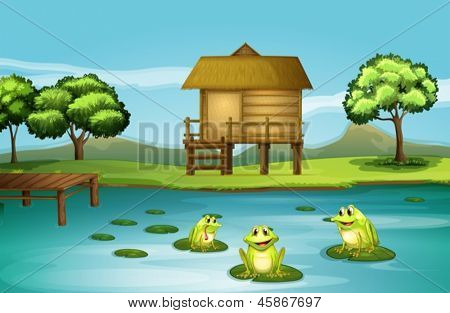 Illustration of a pond with three playful frogs
