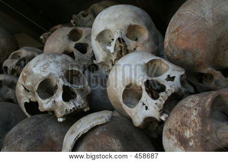 Killing Field Skulls 2