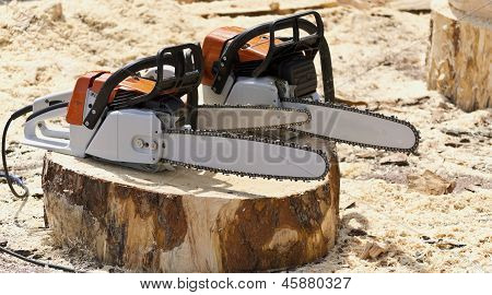 Chain Saws For Working With Wood On A Freshly Felled Tree Stump.
