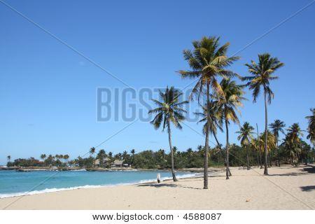 Seashore In Bacuranao Beach, Havana - Ii