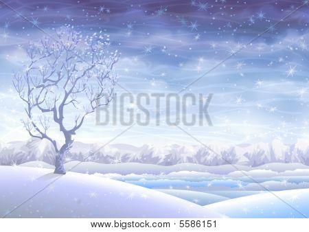 Fairy-tale Snowy Rolling Winter Landscape
