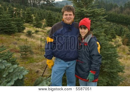 Middle aged couple hunt for the perfect Christmas tree