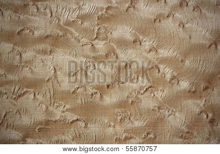 Bird's Eye Maple Wood Surface