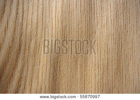 Japanese Elm Wood Surface - Vertical Lines