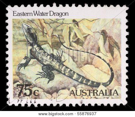 AUSTRALIA - CIRCA 1981: A Stamp printed in AUSTRALIA shows the Eastern Water Dragon, series, circa 1981