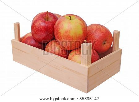 Jonagold Apples In Crate