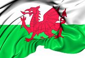 Flag of the Wales. Close Up. 3D. poster