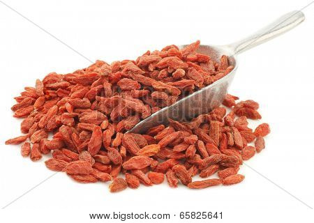 dried goji berries(Lycium Barbarum - Wolfberry)  on an aluminum scoop on white background