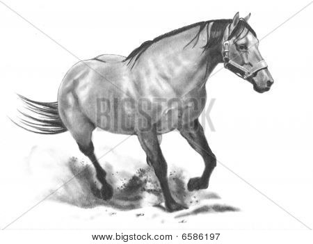 This is my original artwork of a horse running. poster