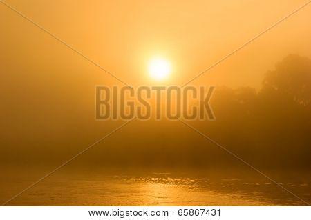 Sunrise Through The Mist In A Tropical Rainforest