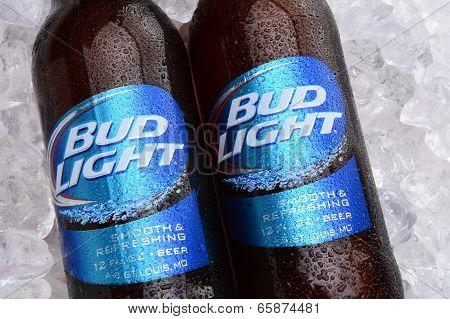 Bud Light Bottles On Ice