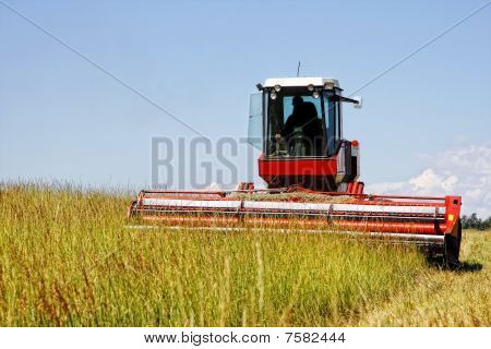 Harvesting a Field of Grass