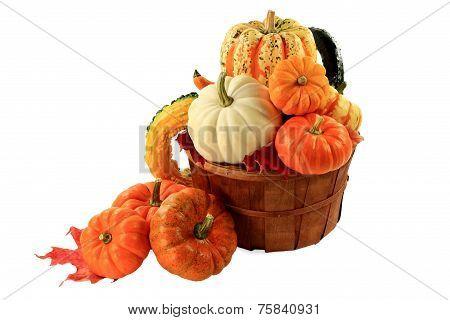 Pumpkins And Squashes Fall Arrangement