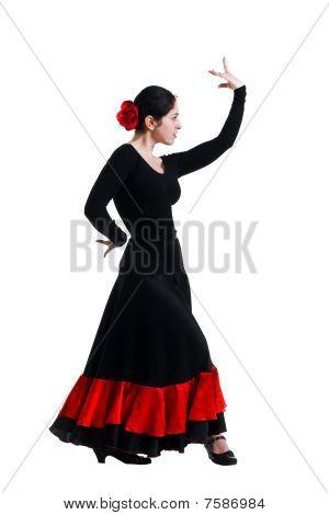 Flamenco Dancer Girl