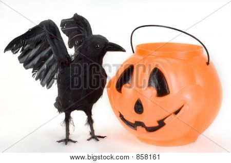 Raven and Candy Pumpkin.