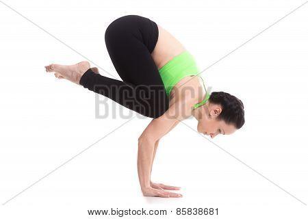Crane (crow) Yoga Handstand Pose