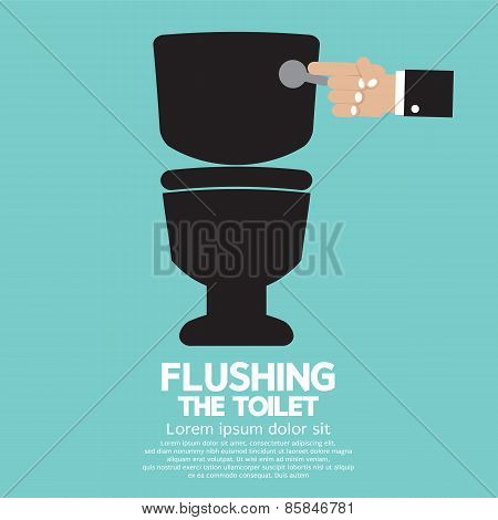 Flushing The Toilet.