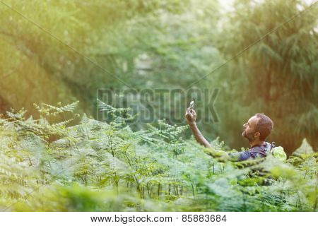 Geocaching In Sunlit Forest
