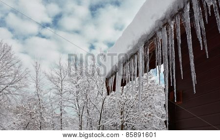 Winter Scene With Icicles