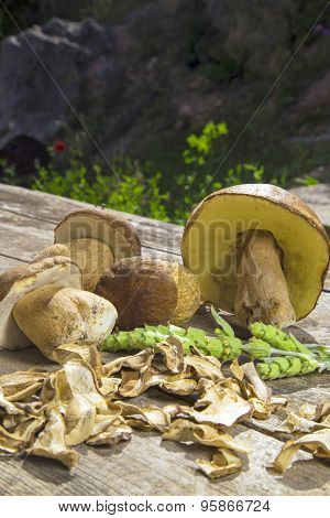 Boletus Edilus Mushrooms On A Wooden Table  – Fresh And Dried