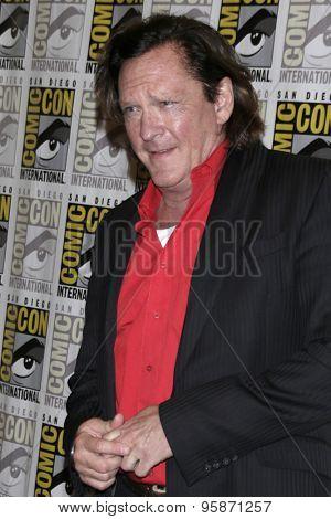 SAN DIEGO - JUL 11:  Michael Madsen at the