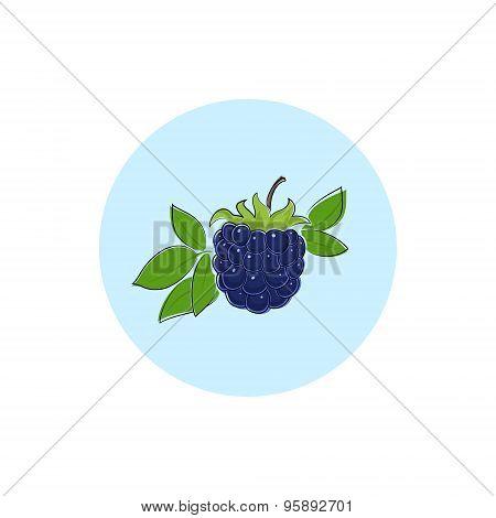 Icon Colorful Blackberry