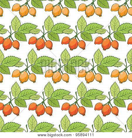 Vector Rosehip Sosa Berries Stripes Seamless Pattern