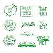 Logotypes set. Badges, labels, ribbons, plants elements, wreaths and laurels green branches.Organic, bio, ecology, eco natural design template. Hand drawing. Vintage vector, green colors poster