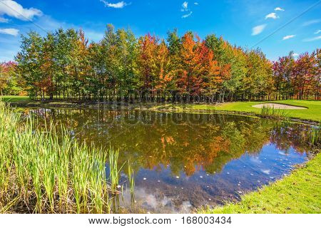 Concept of recreational tourism. Shining day in French Canada. Autumn foliage reflected in clear water of the pond. Adorable pure pond overgrown with reeds