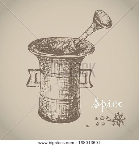 Vintage mortar and spice vector hand drawn illustration. Vintage engraved illustration.