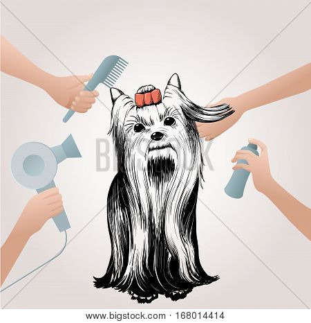 Beauty pets salon concept with sketch dog and hands holding professional grooming accessories vector illustration