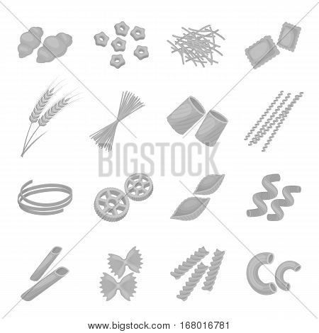 Types of pasta set icons in monochrome design. Big collection of types of pasta vector symbol stock illustration