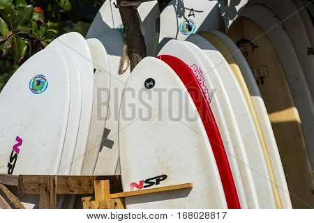 Weligama, Sri Lanka - January 09 2017: Set Of Different Color Surf Boards In A Stack By Ocean.weliga