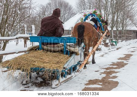 Belarus - February 14, 2016 / After celebrating St Valentine's Day in the Belarusian village the horse was carrying an old man on a wooden sledge home horse decorated with flowers road and roofs of houses in the snow a winter trees without foliage wooden