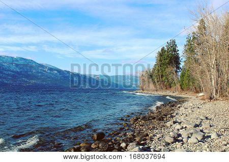 Rocky Beach And Trees Along Lake