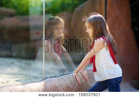Cute Little Girl Watching Animals In The Zoo On Warm And Sunny Summer Day