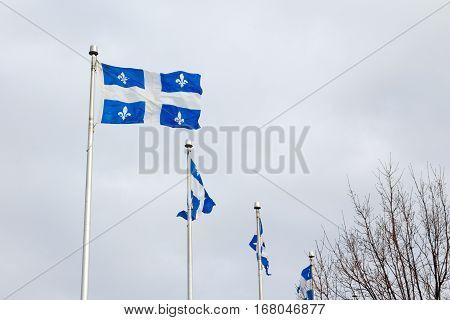 Quebec flags in Quebec city, QC, Canada