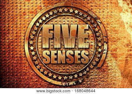 five senses, 3D rendering, grunge metal stamp