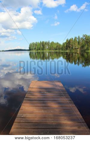 Typical Finnish nature fir woods near lake Karelia