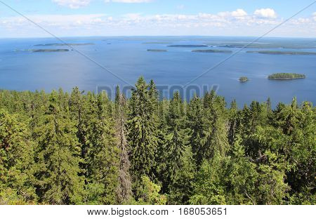 Nature of national park Koli Joensuu Finland