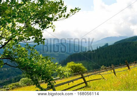 Field with haystack on mountains meadow, summer day