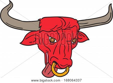 Drawing sketch style illustration of a texas longhorn red bull head tongue out set on isolated white background.