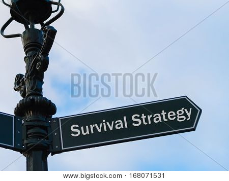 Survival Strategy Directional Sign On Guidepost