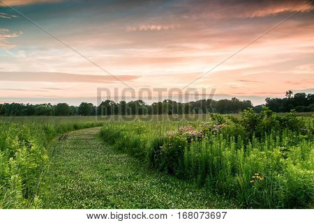 Trail through prairie grass with sunset in background