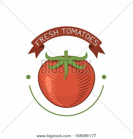 Fresh red tomato badge isolated vector vegetable. Food ingredient juicy vegetarian healthy food single plant logo. Organic vitamin produce nutrition.