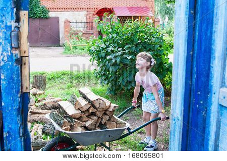 Little girl helps to carry the firewood in a wheelbarrow.
