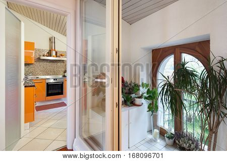 Small veranda with ornamental plants, kitchen view in the background