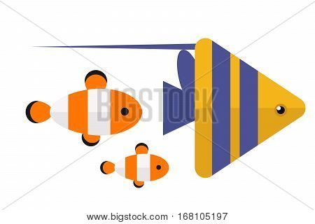 Reef clown fish or anemone vector illustration. Wild aquatic marine orange cute animal. Exotic pet saltwater undersea vivid nature amphiprion.